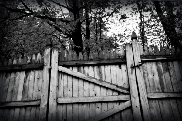 fence by squee43-stock