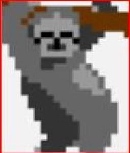 usmanwidodo's Profile Picture