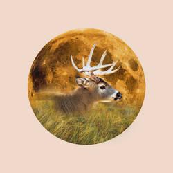 12 Full Moons 2018 - July - Buck Moon by Loupii