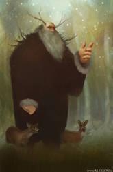 Father winter by alexson1