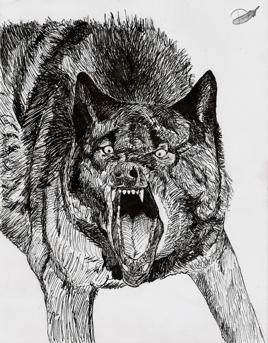 Angry Wolf by Domisea on DeviantArt