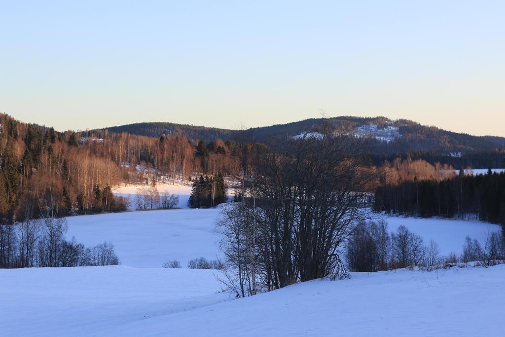 Winter landscape by erikalr