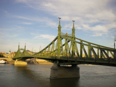 Liberty Bridge ~ Budapest