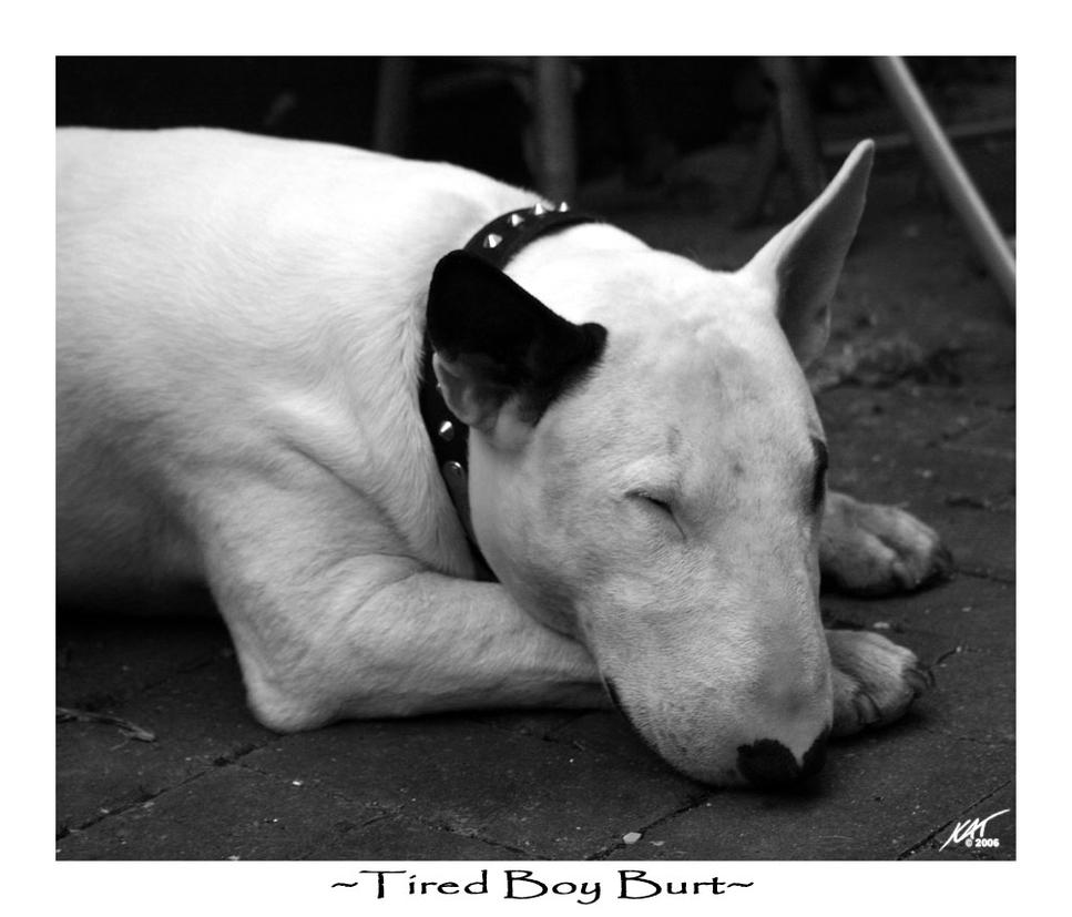 Tired Boy Burt by Tenshadesofgrey