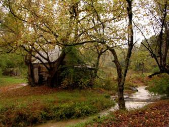 Fall Stream by photowizard