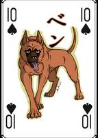 GNG Raffle card #10
