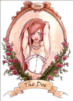 - June the Doe -