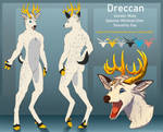Dreccan - Reference Sheet