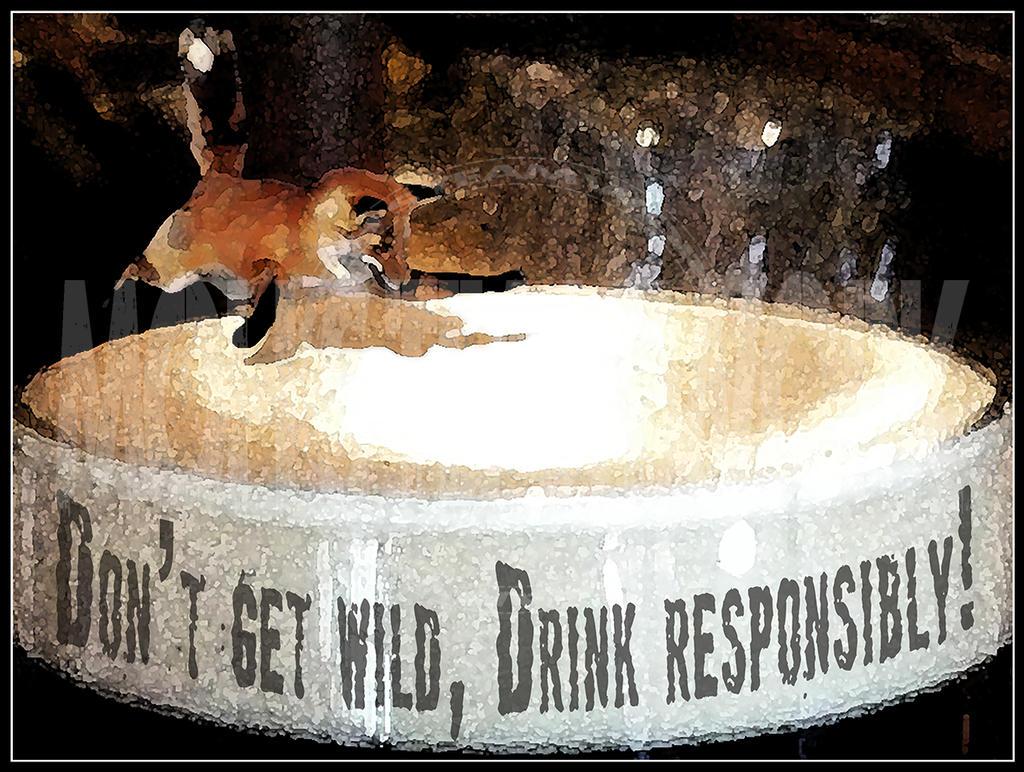 drink responsibly wallpaper - photo #28