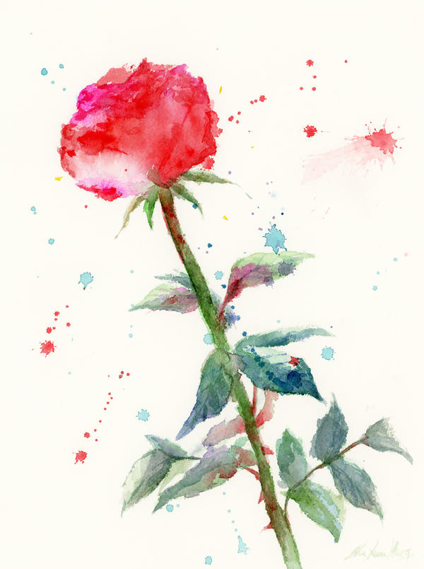Rose rose lover red rose watercolor painting by for How to paint a rose in watercolour