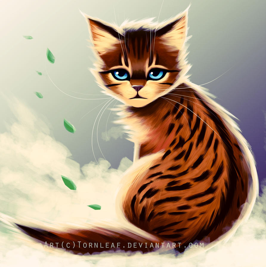 Littlecloud by Akonis