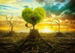 Rebirth of paradise