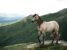 Mountainous by russellskiy