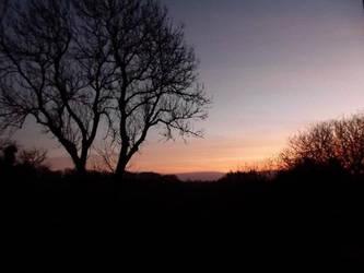 Sky by Kerry53779