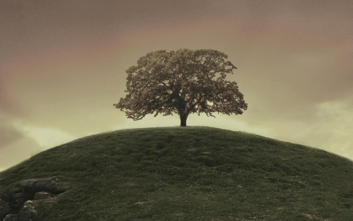 one tree hill desktop 2 by luckydesigns on deviantart. Black Bedroom Furniture Sets. Home Design Ideas
