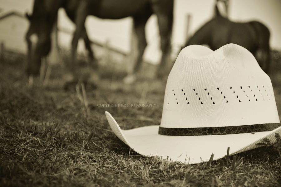 life of a cowboy hat by luckydesigns