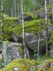 Boulders and Moss by Jezhawk-stock