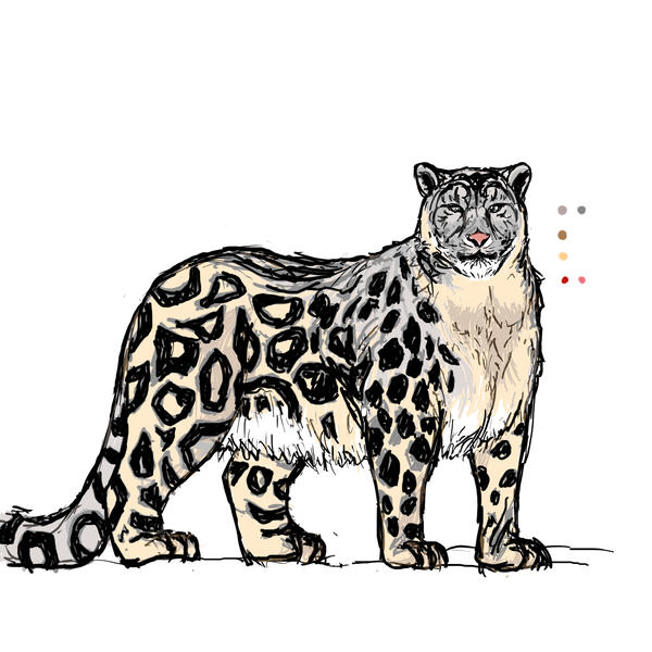 Cartoon snow leopard - photo#12