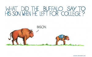 What did the buffalo say to his son when he left?