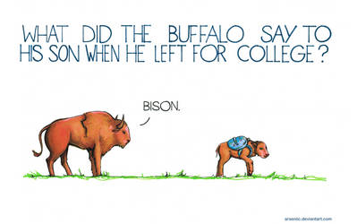 What did the buffalo say to his son when he left? by arseniic