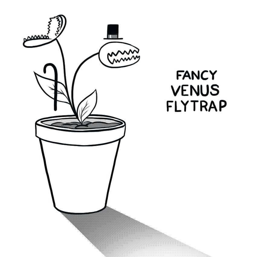 Fancy Venus Flytrap by arseniic