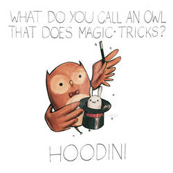What do you call an owl that does magic tricks?
