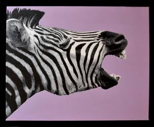 Zebra stencil by beckenslobber