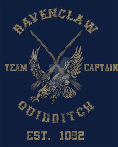 Ravenclaw Quidditch by spacemonkeydr on DeviantArt
