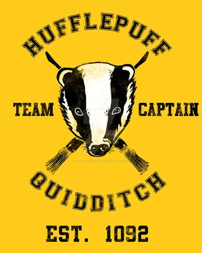 Hufflepuff Quidditch By Spacemonkeydr On DeviantArt