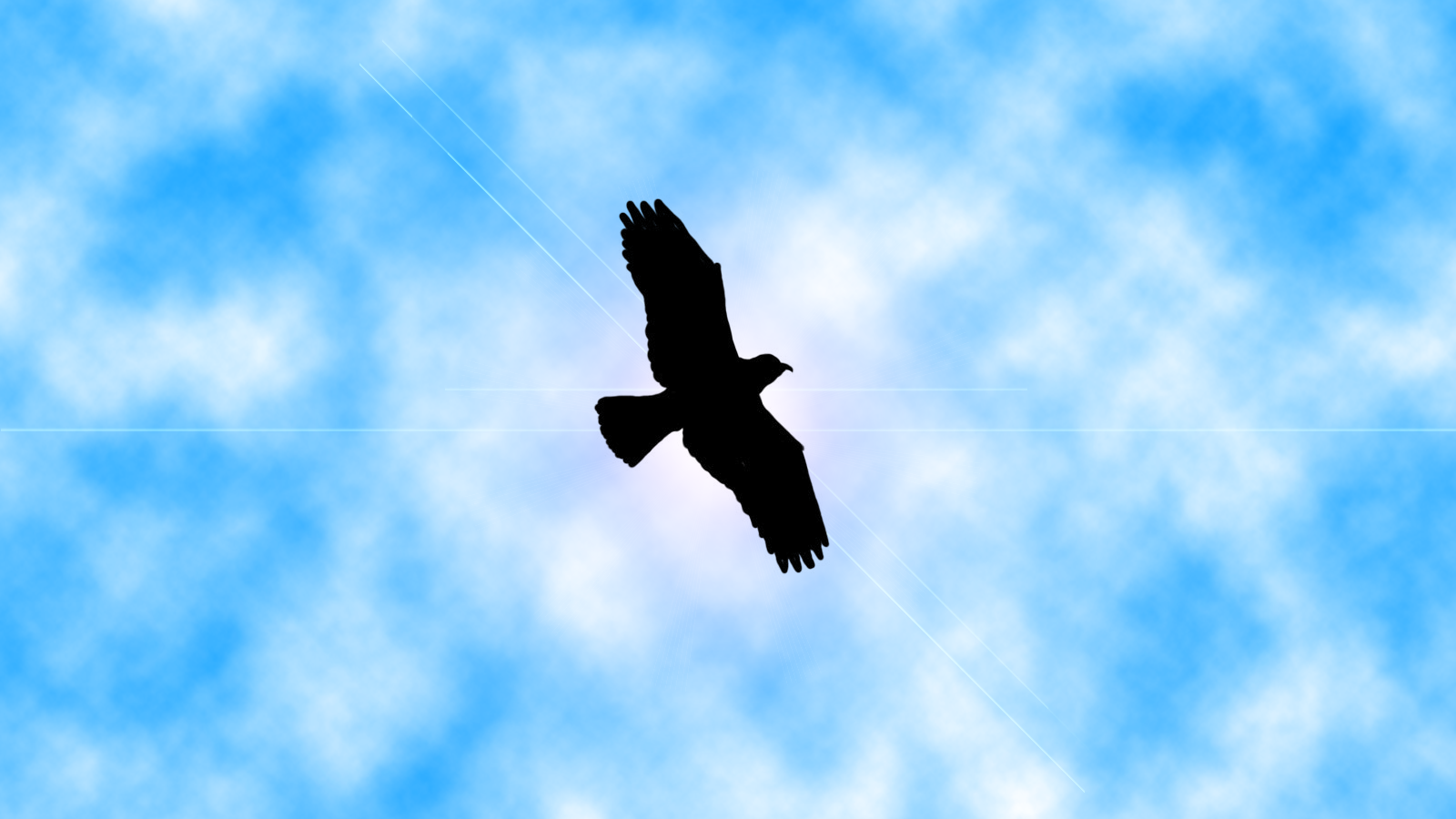 free bird by aoc 08 on deviantart
