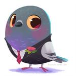 dapper pigeon