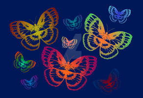 Colorful Butterflies on Blue