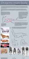 Dragon tutorial: Main body