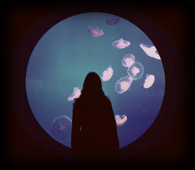 Framed by Moon Jellies by emmasea