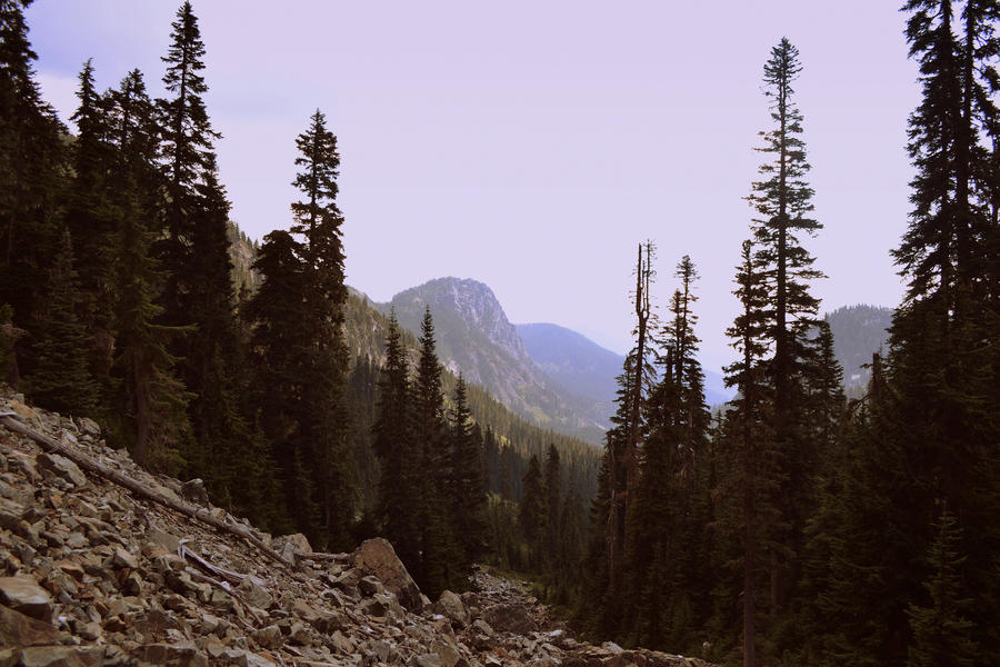 Snoqualmine National Forest by emmasea