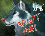 [OPEN] Adopt + Painting