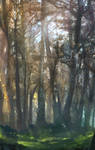 MOre Forest by DavidCuriel