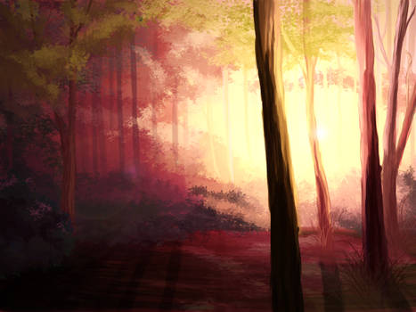 Forest at dawn