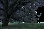 Mystical tree PNG