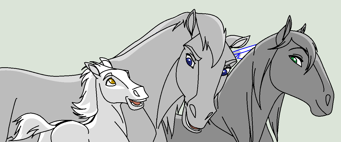 Color Of The Paint Horse