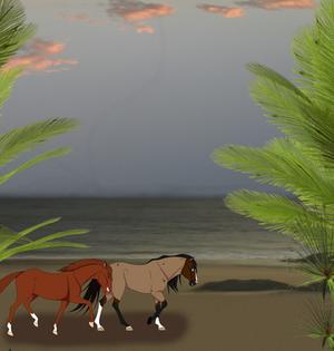 Sandy Beaches|Commission