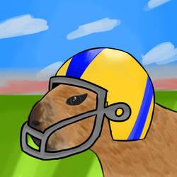 football capybara
