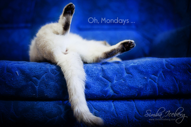 Oh mondays... by Katrin-Elizabeth