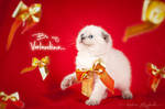 Be my Valentine! by Katrin-Elizabeth
