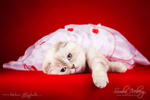 Beauty in the red :) by Katrin-Elizabeth