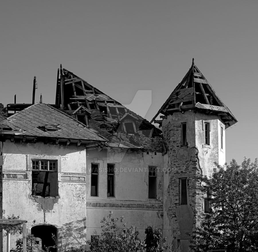 Old House BW by WasisHo