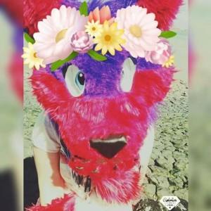 pinkheartxx's Profile Picture