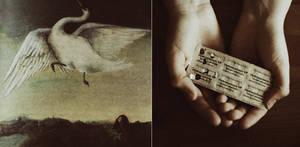 schizophrenia, pain, voices