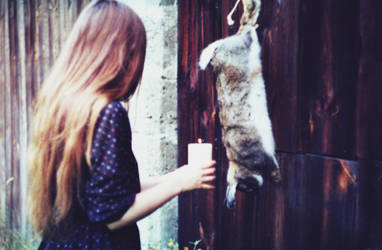 SOMEONE KILLED ALICIA'S RABBIT by laura-makabresku