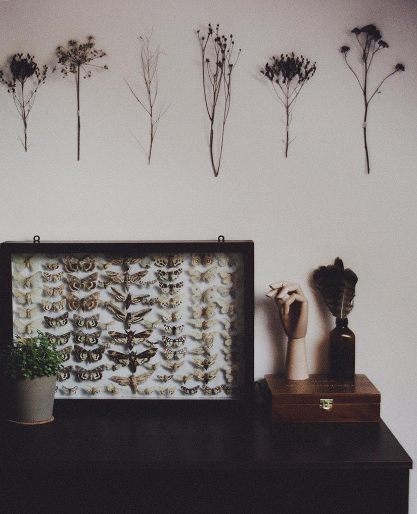 Long evenings in my room. by laura-makabresku